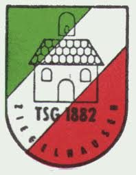 TSG Ziegelhausen Volleyball